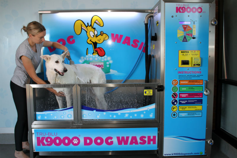 Retail news in wilmington nc wilmingtonbiz an australian company that manufactures do it yourself dog washing stations is celebrating the opening of its us headquarters in wilmington solutioingenieria Images